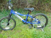 Raliegh 20 inch Boy's mountain bike in Camp Lejeune, North Carolina