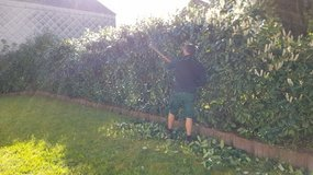 Yard Work/Lawn Care/Maintenance Service&Pressure Washing&More in Ramstein, Germany