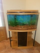 36 Gallon Bowed Front Aquarium with stand in Oswego, Illinois