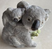 Koala Mother & Baby Container in Okinawa, Japan