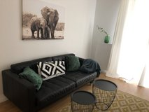 Furnished ; very cosy new styled 2 room apartment in Wiesbaden, GE