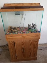20 Gallon Aquarium with stand, filter & lid in Chicago, Illinois