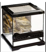 Wanted Exo Terra  reptile tank in Joliet, Illinois