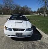 Convertable Mustang Ready To Go For Summer in Tinley Park, Illinois