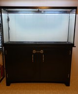 55 Gallon Aquarium/Fish Tank with Stand, Lights, and Lids in Byron, Georgia