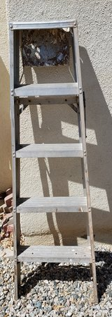 REDUCED Step Ladder 5' Alum in 29 Palms, California