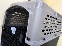 XL dog kennel flight approved in Okinawa, Japan