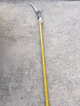 Telescoping Pole Saw with Pruner in Plainfield, Illinois