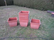 big plant pots for tomatoes and more in Ramstein, Germany