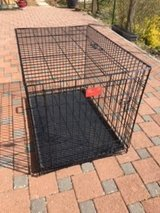 Life Stages Single Door Folding Dog Crate (Large) in Ramstein, Germany