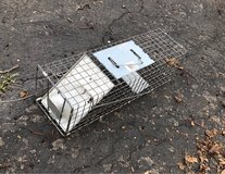 Small animal trap in Plainfield, Illinois
