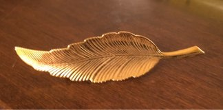Leaf Pin in Plainfield, Illinois