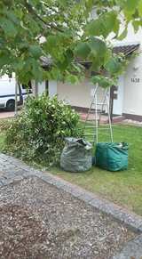 YARD WORK/LAWN CARE SERVICES in Ramstein, Germany