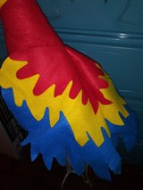 Parrot hat in The Woodlands, Texas