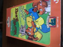 Bernstein bears And the wild wild honey VHS in Ramstein, Germany
