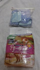 Doggy Diapers in Okinawa, Japan