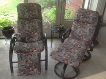 Pair of Outdoor Chairs in Batavia, Illinois