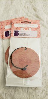 Scentsy scent circle in Moody AFB, Georgia