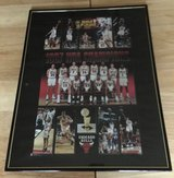 Chicago Bulls 1997 NBA champion poster in Yorkville, Illinois
