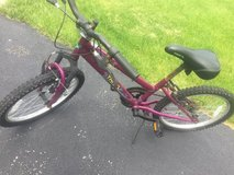 "Small 16"" girls bike in Aurora, Illinois"
