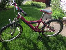 Girls 20 inch bike in Batavia, Illinois