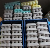 Egg Cartons (66) in Fort Campbell, Kentucky