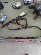 Harley Davidson Collar & Leash #2406-75 in Camp Lejeune, North Carolina