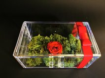 Rosenbox with Infinity preserved rose in acrylic box. Exceptional gift in Ramstein, Germany