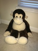 MONKEY in Kingwood, Texas