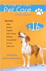 Dog Walker in Naperville, Illinois