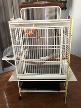 large parrot cage in Morris, Illinois