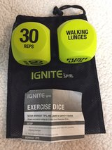 Exercise Dice in St. Charles, Illinois