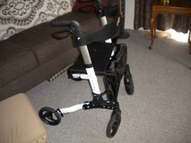 Rollator/Walker in Plainfield, Illinois
