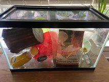 10 gallon small animal tank with accessories and screen lid in Naperville, Illinois