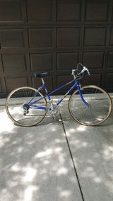 10 Speed Bicycle in Naperville, Illinois