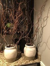 Vases with dried branches (price includes both) in Naperville, Illinois