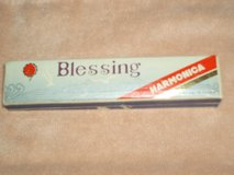 Blessing Harmonica in Naperville, Illinois