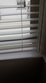 PLANTATION BLINDS in 29 Palms, California
