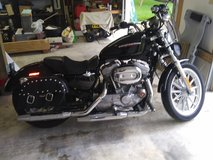 2007 Harley Davidson Sportster XL 883 (Low) in Cherry Point, North Carolina