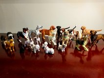 Dog Collection of 21 in Naperville, Illinois