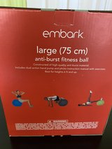 large Embark fitness ball with pump in Conroe, Texas