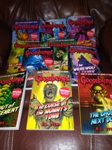 Goosebumps books in Houston, Texas