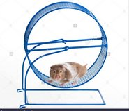 New Pet Exercise Wheel in Fort Bliss, Texas