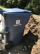 Naperville large recycling can in Bartlett, Illinois