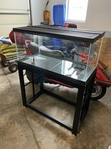 40 gallon breeder tank with metal stand in Naperville, Illinois