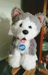 "Husky 14"" Build a Bear Promise Pets in 29 Palms, California"