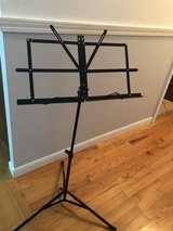 Music Stand Chroma Cast in Naperville, Illinois