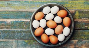 fresh organic free ranging eggs for sale in Camp Lejeune, North Carolina