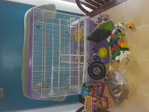Selling budgie with cage and MANY accessories in Fort Leonard Wood, Missouri