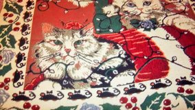"""Cat wall hanging for the cat lover. 43"""" X 84    with 1 1/2"""" fringe in Alamogordo, New Mexico"""